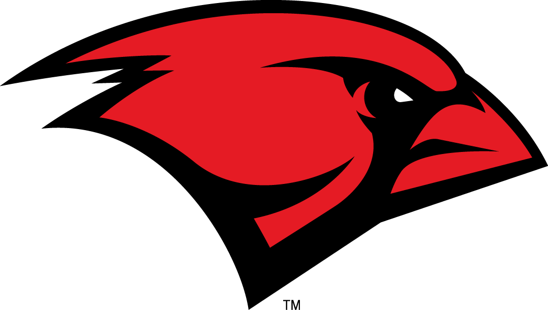 Incarnate Word Cardinals iron ons