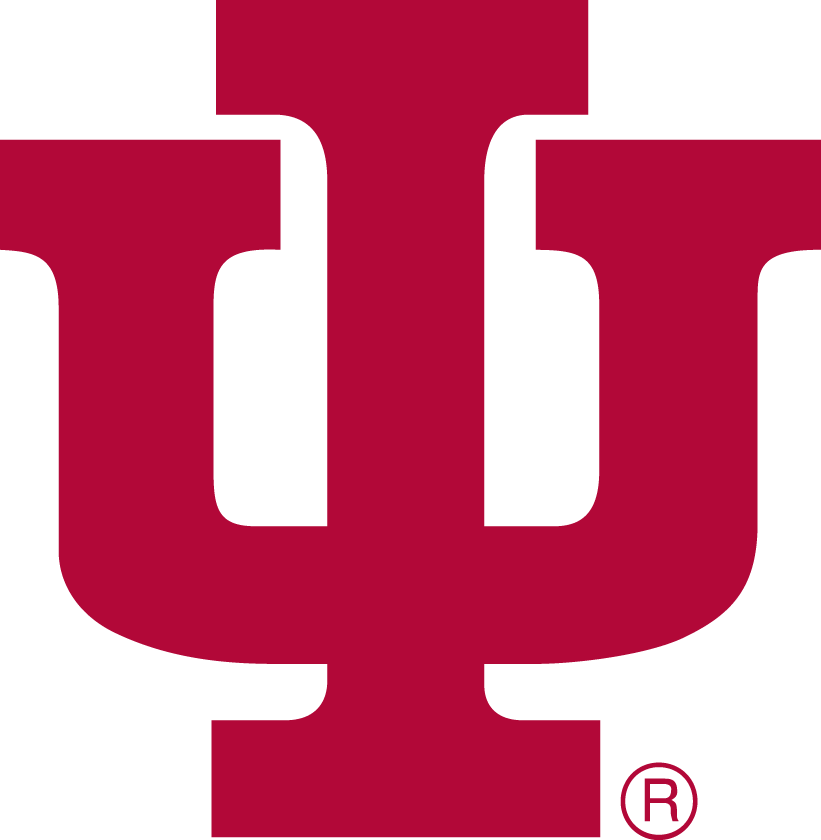 Indiana Hoosiers 1976-1981 Primary Logo iron on transfers for clothing