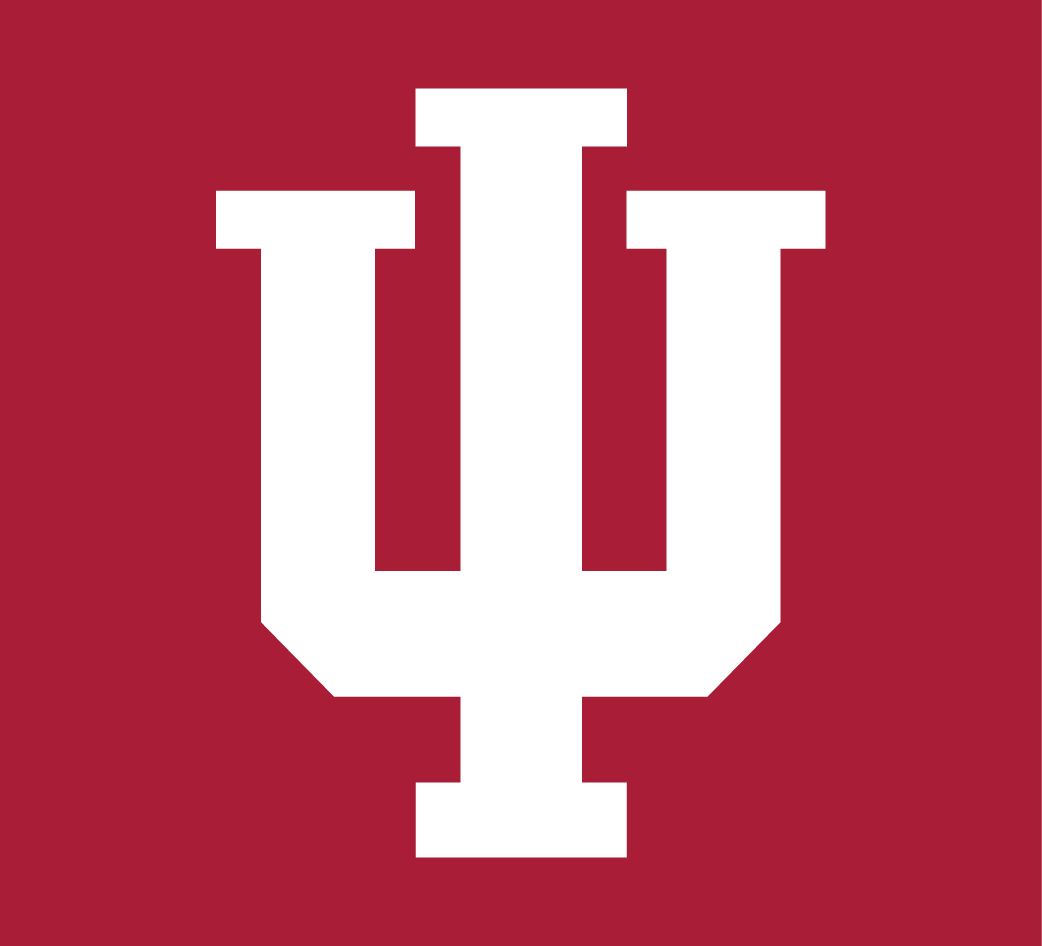 Indiana Hoosiers 2002-Pres Alternate Logo v2 iron on transfers for clothing