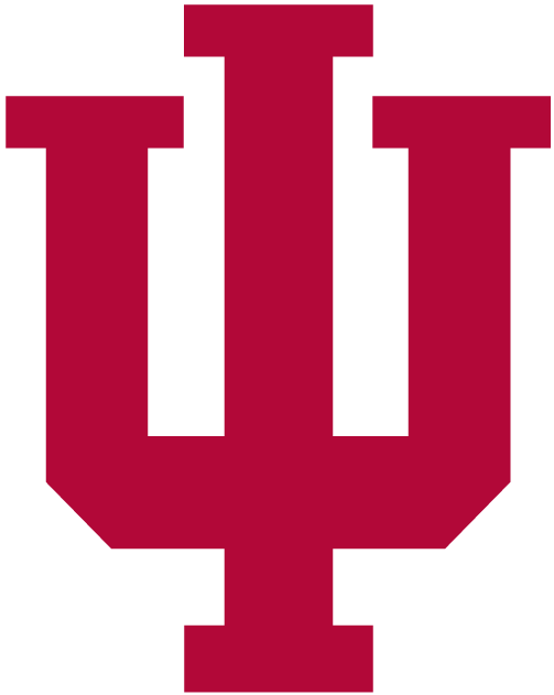 Indiana Hoosiers 2002-Pres Primary Logo iron on transfers for clothing