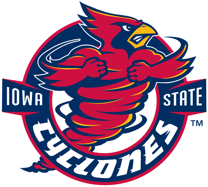Iowa State Cyclones 1995-2007 Alternate Logo iron on transfers for clothing