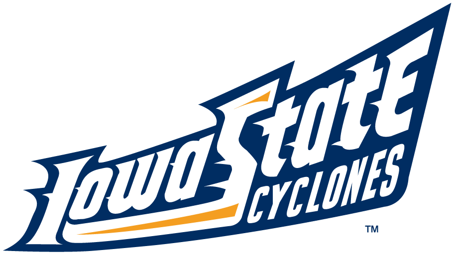 Iowa State Cyclones 1995-2007 Wordmark Logo v7 iron on transfers for clothing