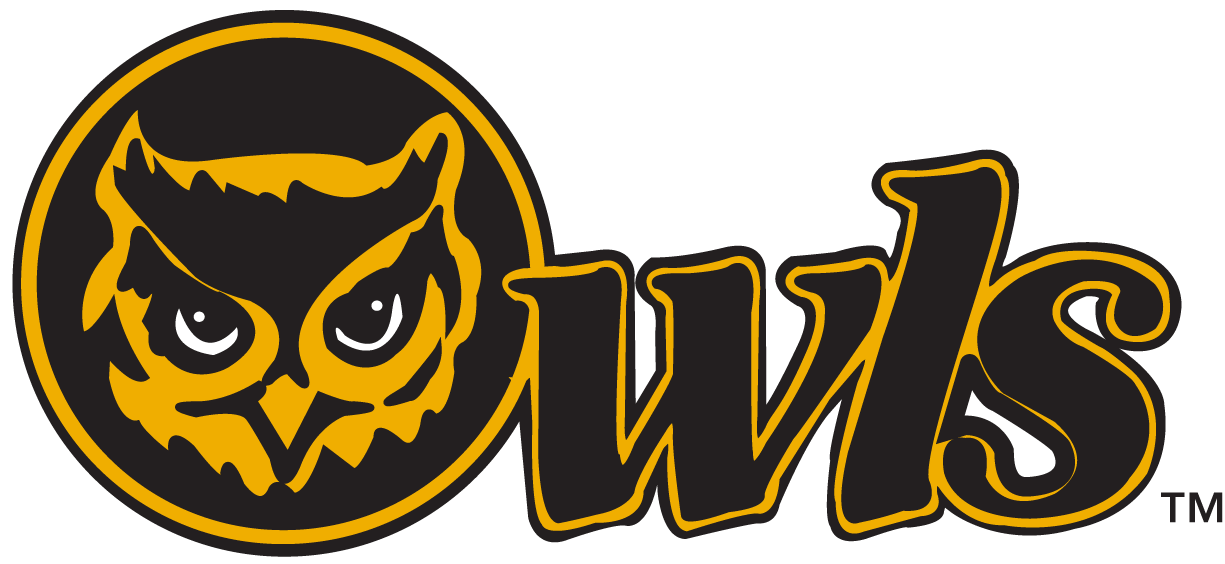 Kennesaw State Owls 0-2011 Secondary Logo v2 iron on transfers for clothing