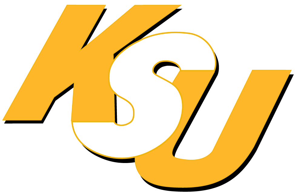 Kennesaw State Owls 0-2011 Wordmark Logo v2 iron on transfers for clothing