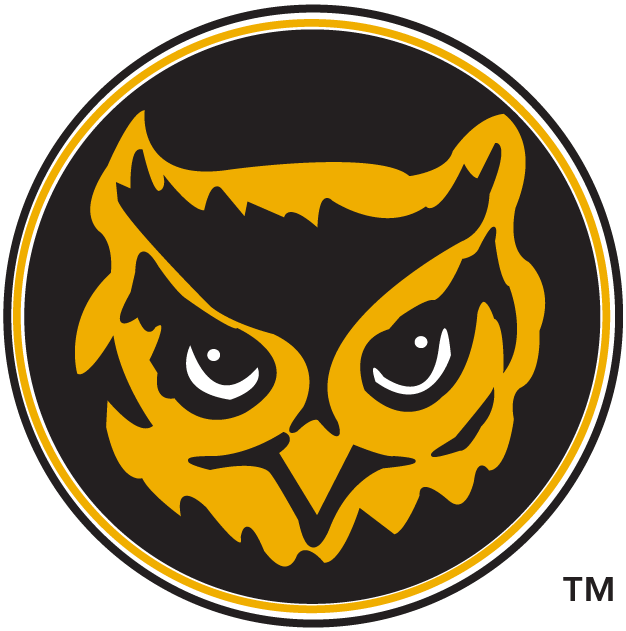 Kennesaw State Owls 1992-2011 Alternate Logo iron on transfers for clothing