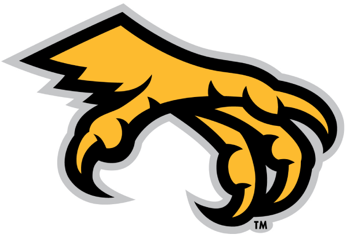 Kennesaw State Owls 2012-Pres Alternate Logo v2 iron on transfers for clothing