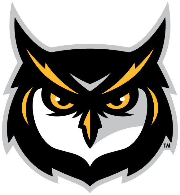 Kennesaw State Owls 2012-Pres Alternate Logo v3 iron on transfers for clothing