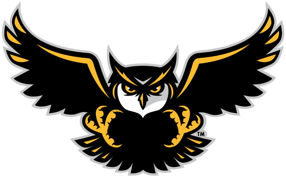 Kennesaw State Owls 2012-Pres Alternate Logo v4 iron on transfers for clothing