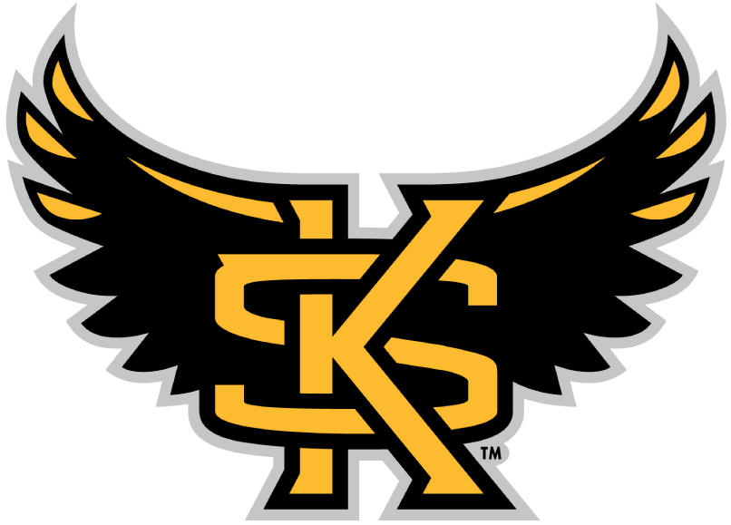 Kennesaw State Owls 2012-Pres Alternate Logo iron on transfers for clothing