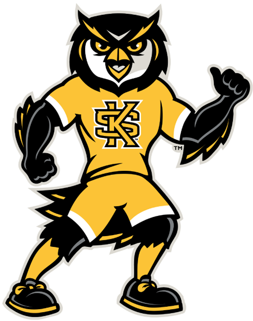 Kennesaw State Owls 2012-Pres Mascot Logo iron on transfers for clothing