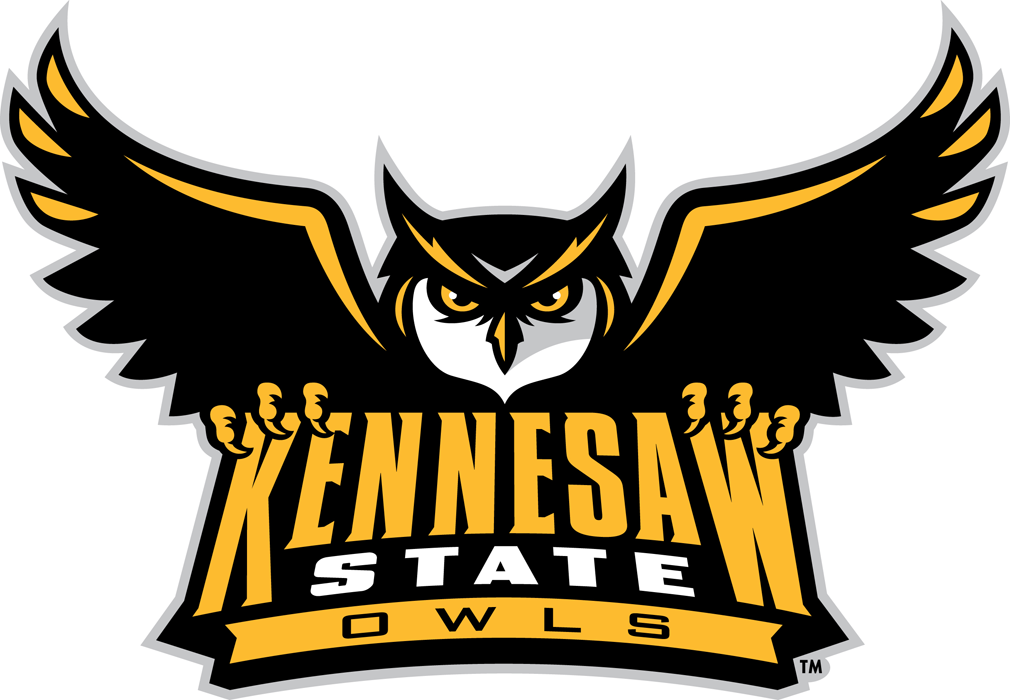 Kennesaw State Owls iron ons