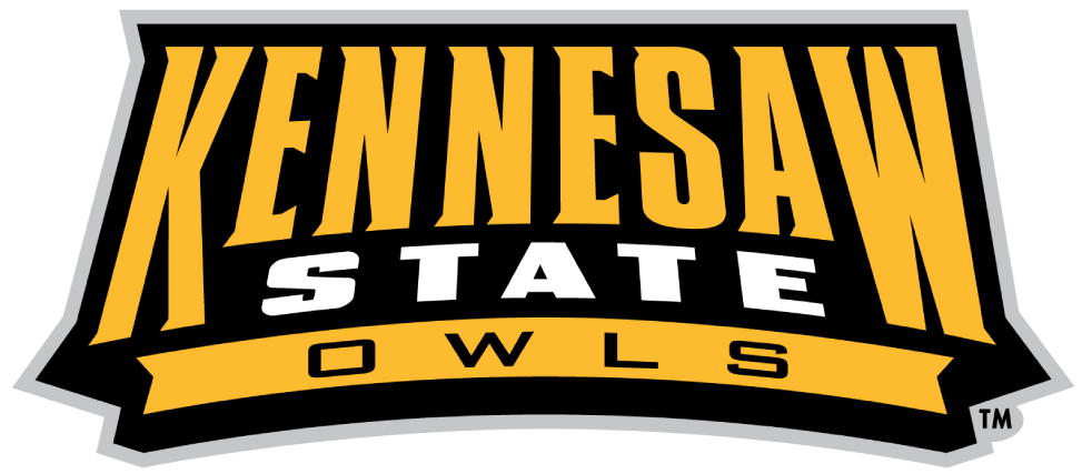 Kennesaw State Owls 2012-Pres Wordmark Logo v2 iron on transfers for clothing