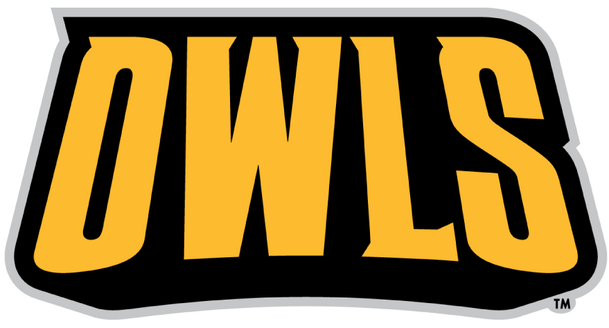 Kennesaw State Owls 2012-Pres Wordmark Logo iron on transfers for clothing