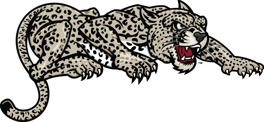 Lafayette Leopards 2000-Pres Partial Logo v2 iron on transfers for clothing