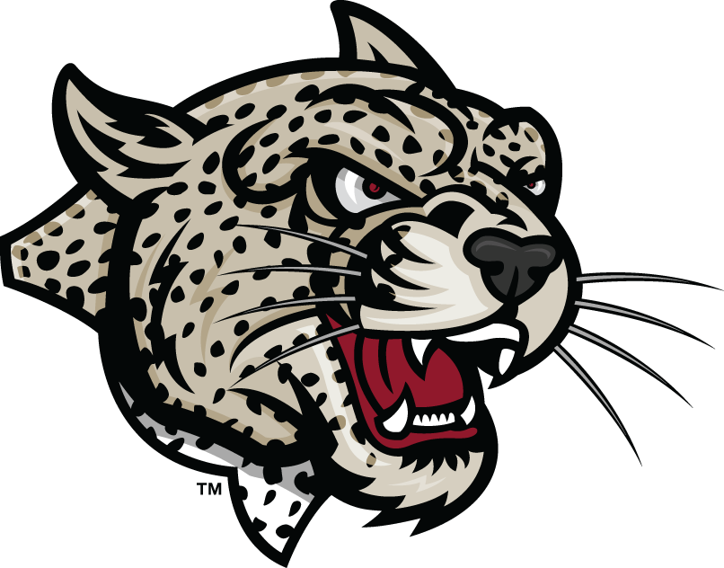 Lafayette Leopards 2000-Pres Partial Logo iron on transfers for clothing