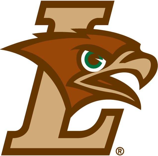 Lehigh Mountain Hawks iron ons