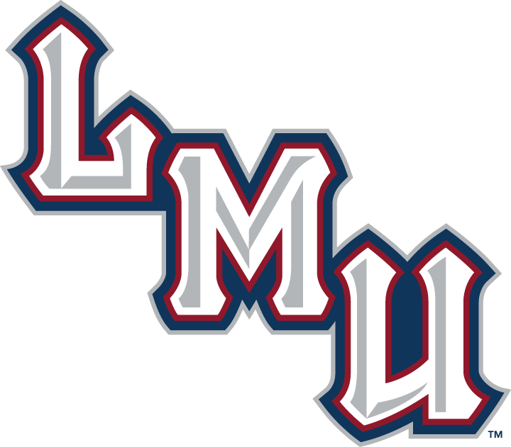 Loyola Marymount Lions 2001-Pres Wordmark Logo v2 iron on transfers for clothing