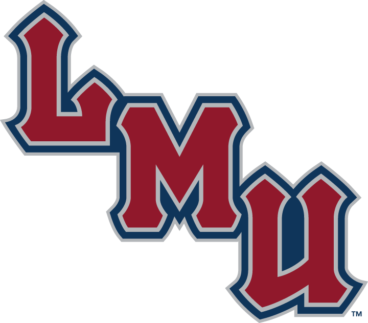 Loyola Marymount Lions 2001-Pres Wordmark Logo v4 iron on transfers for clothing