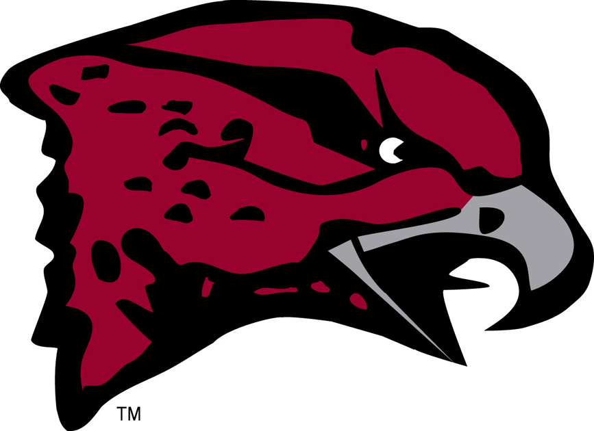 Maryland-Eastern Shore Hawks iron ons