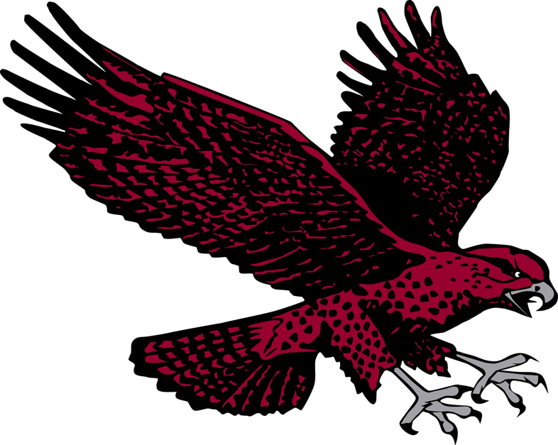Maryland-Eastern Shore Hawks 2007-Pres Secondary Logo iron on transfers for clothing