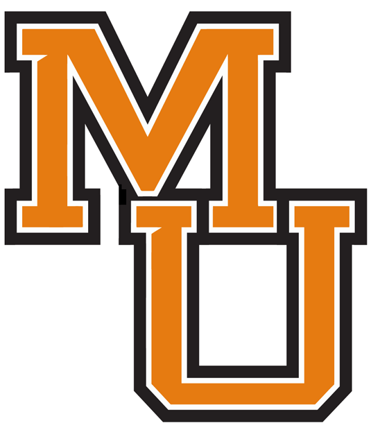 Mercer Bears 0-Pres Wordmark Logo iron on transfers for clothing