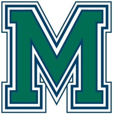 Mercyhurst Lakers 0-2008 Alternate Logo iron on transfers for clothing