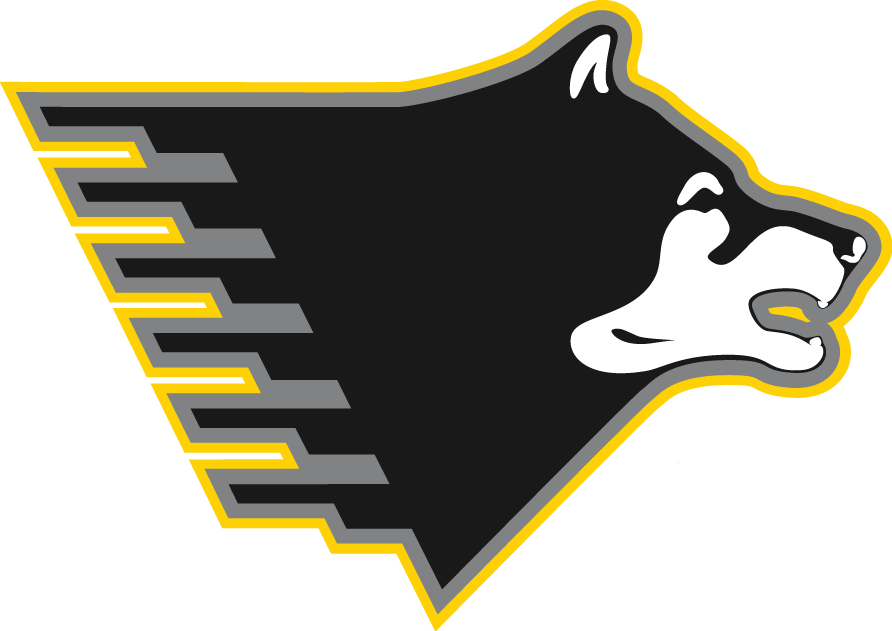 Michigan Tech Huskies 2005-Pres Partial Logo iron on transfers for clothing