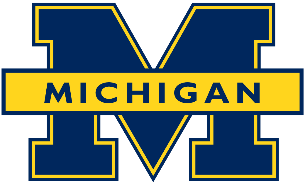 Michigan Wolverines 1996-2011 Primary Logo iron on transfers for clothing