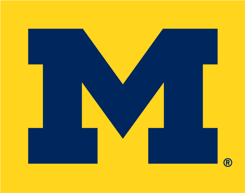 Michigan Wolverines 1996-Pres Alternate Logo v4 iron on transfers for clothing