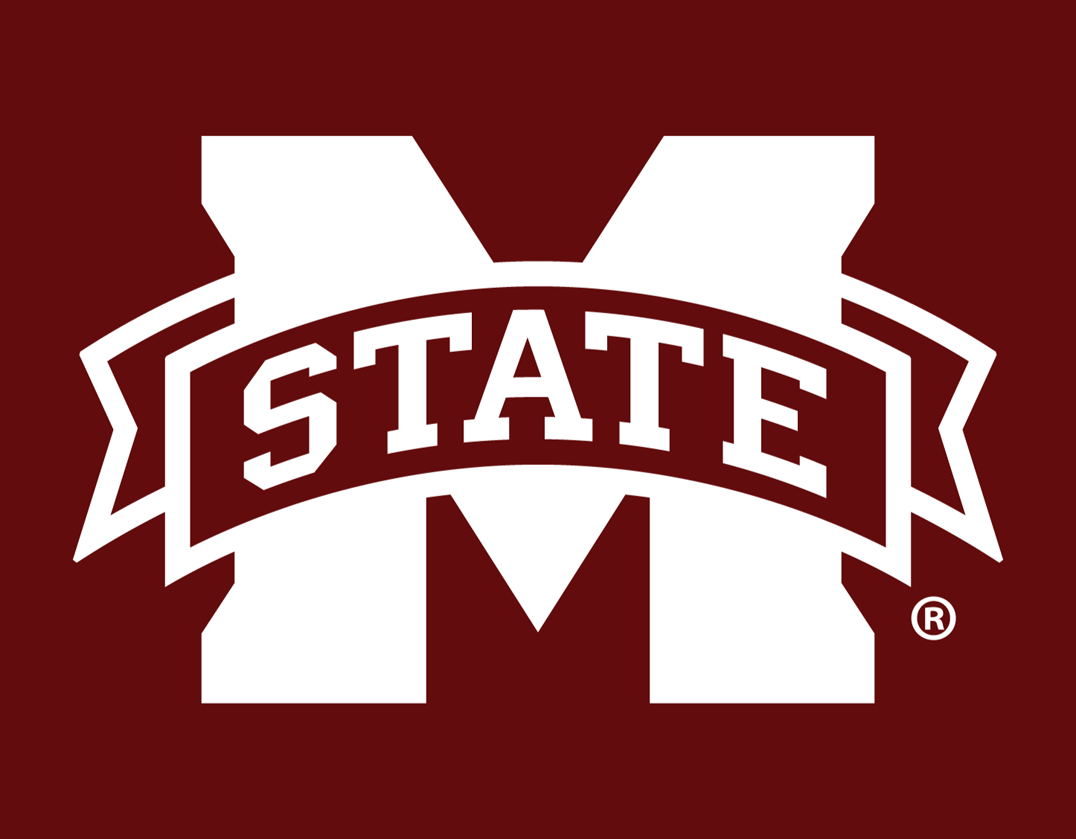 Mississippi State Bulldogs 2009-Pres Alternate Logo v2 iron on transfers for clothing