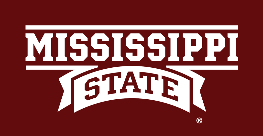 Mississippi State Bulldogs 2009-Pres Wordmark Logo v2 iron on transfers for clothing
