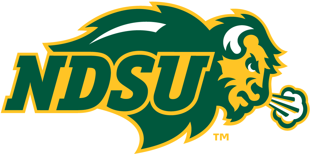 North Dakota State Bison iron ons