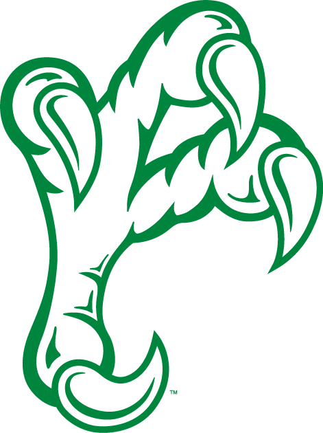 North Texas Mean Green 2005-Pres Alternate Logo iron on transfers for clothing