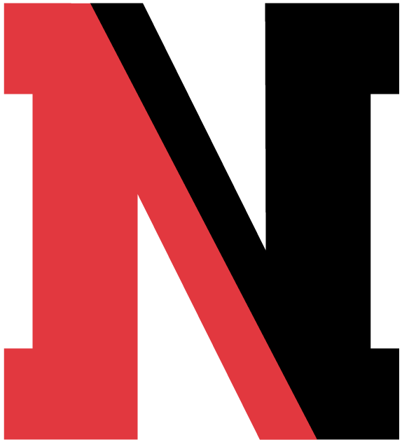 Northeastern Huskies iron ons