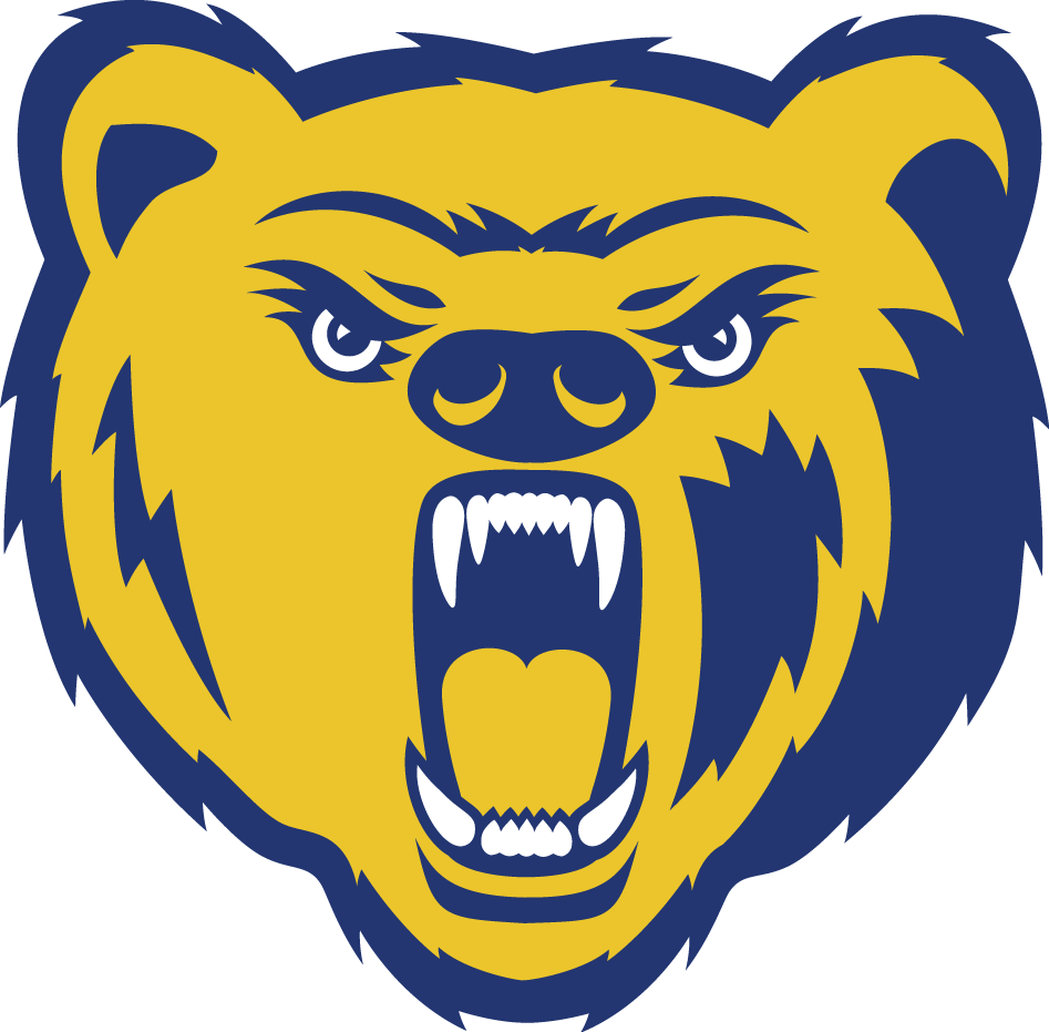 Northern Colorado Bears 2004-2009 Secondary Logo iron on transfers for clothing