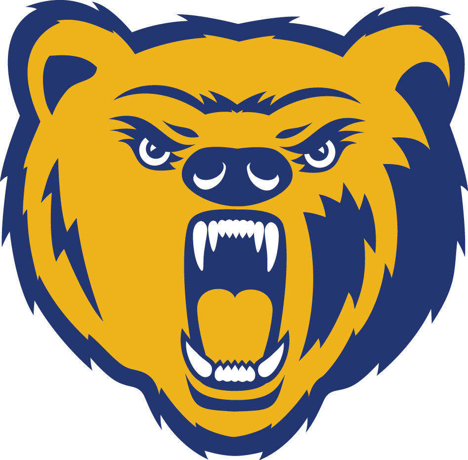 Northern Colorado Bears 2010-2014 Primary Logo iron on transfers for clothing
