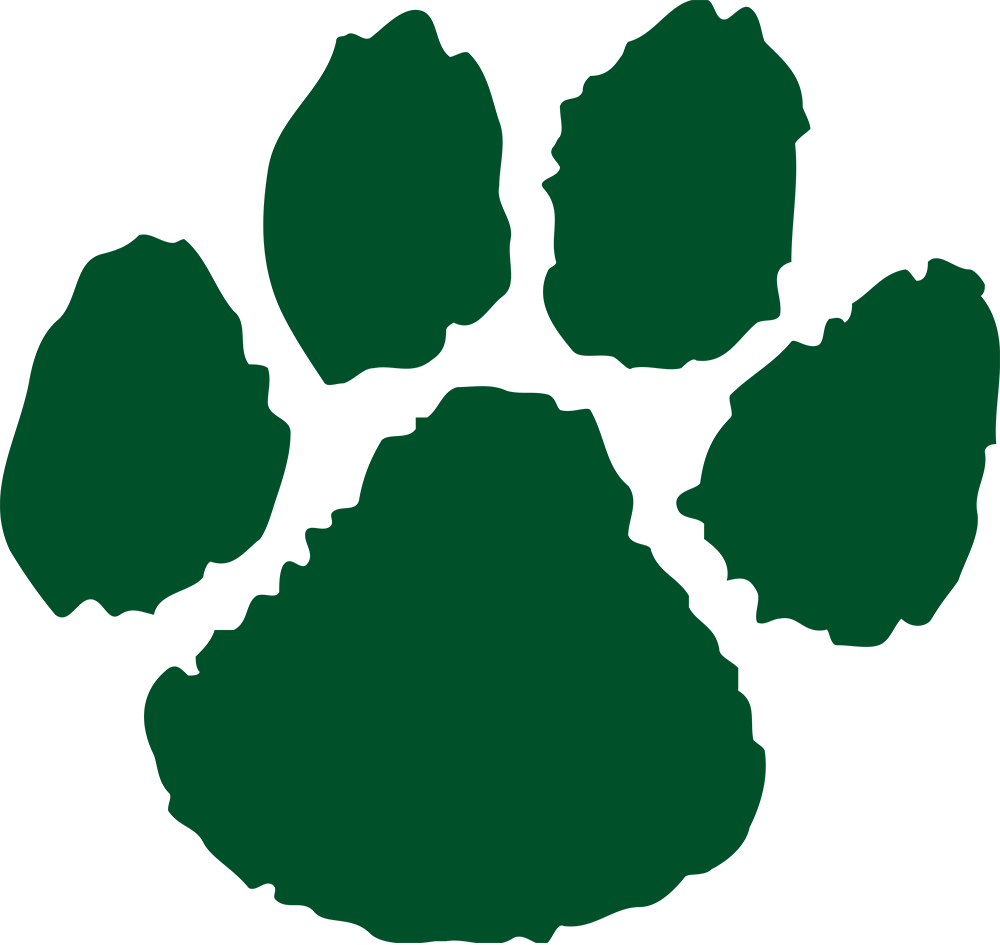 Northern Michigan Wildcats 0-Pres Alternate Logo v2 iron on transfers for clothing