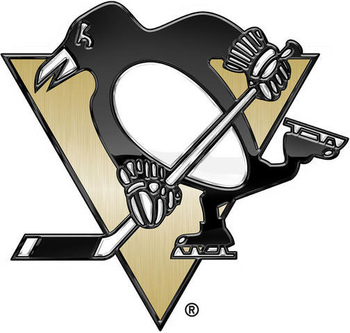 Pittsburgh Penguins 2014 Special Event Logo iron on transfers for clothing