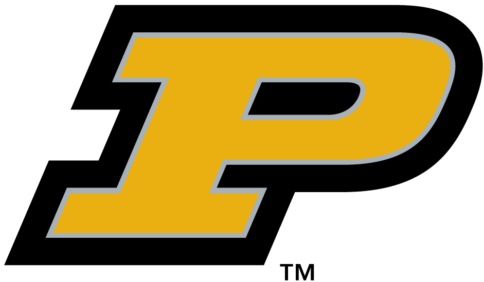 Purdue Boilermakers 1996-2011 Alternate Logo v2 iron on transfers for clothing