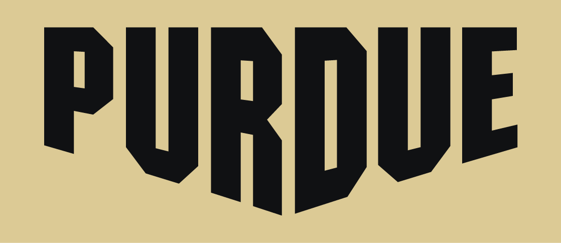 Purdue Boilermakers 2012-Pres Wordmark Logo v6 iron on transfers for clothing