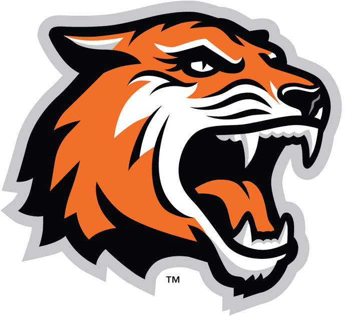 RIT Tigers 2004-Pres Alternate Logo v2 iron on transfers for clothing