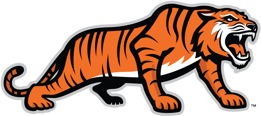 RIT Tigers 2004-Pres Alternate Logo v3 iron on transfers for clothing