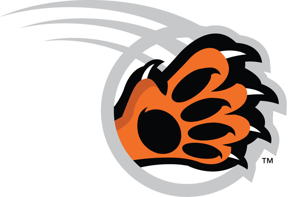 RIT Tigers 2004-Pres Alternate Logo v4 iron on transfers for clothing