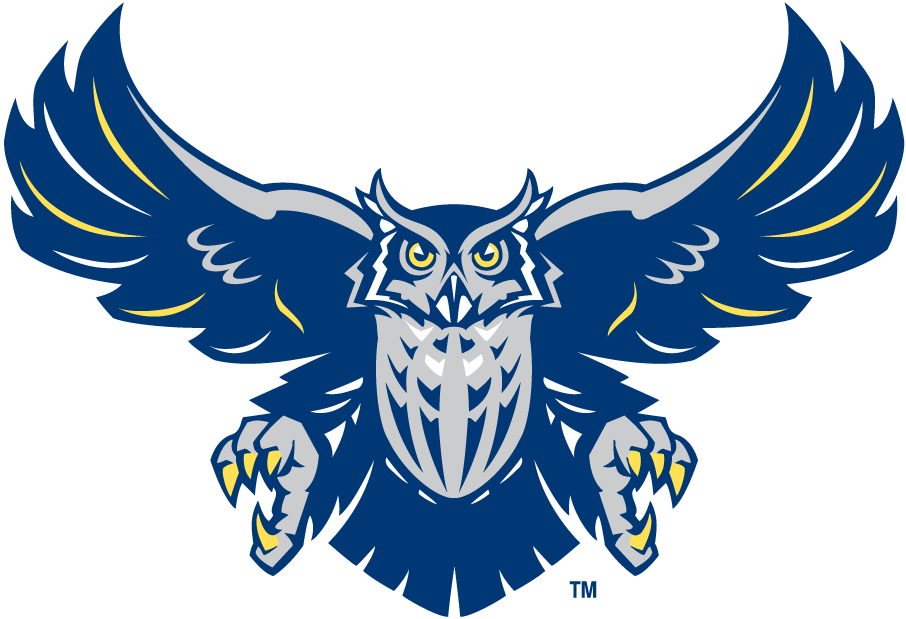 Rice Owls 2003-2009 Alternate Logo v3 iron on transfers for clothing