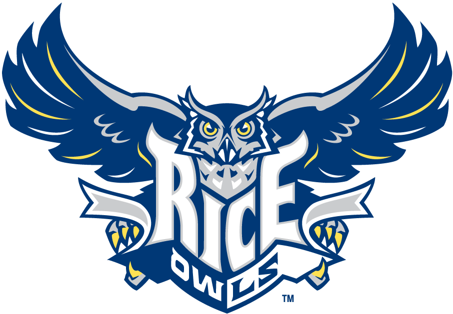 Rice Owls 2003-2009 Primary Logo iron on transfers for clothing