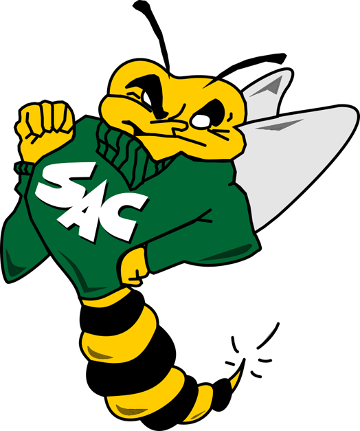 Sacramento State Hornets 1991-2003 Primary Logo iron on transfers for clothing