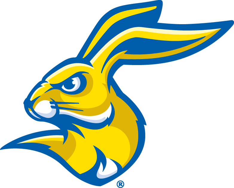 South Dakota State Jackrabbits 2008-Pres Partial Logo v2 iron on transfers for clothing
