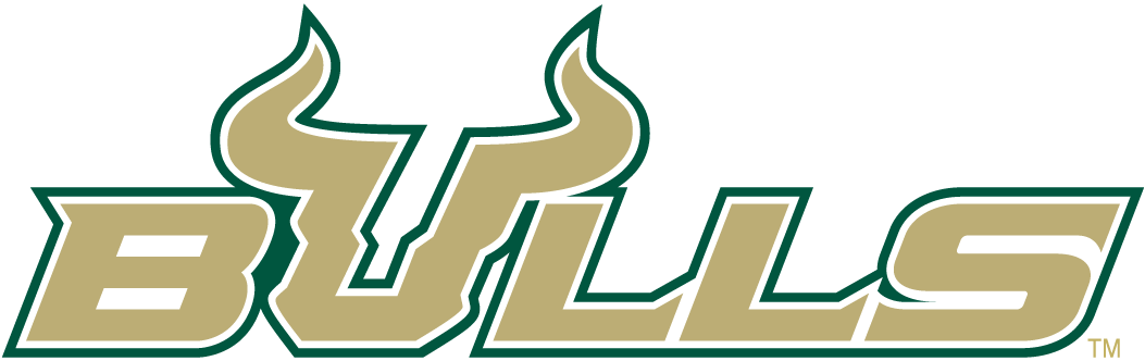 South Florida Bulls 2003-Pres Wordmark Logo v4 iron on transfers for clothing