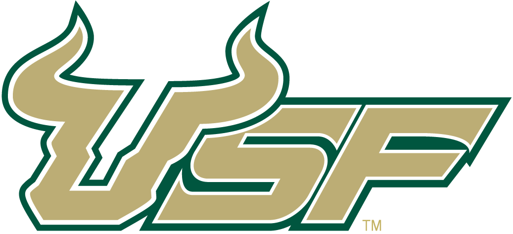 South Florida Bulls 2003-Pres Wordmark Logo v5 iron on transfers for clothing