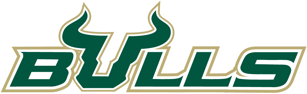 South Florida Bulls 2003-Pres Wordmark Logo iron on transfers for clothing